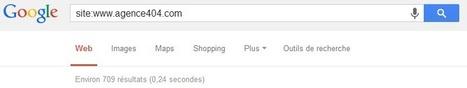 Pourquoi mon site n'apparaît pas dans Google ? | Référencement et Webmarketing | Scoop.it