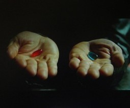 10 lessons I learned by taking the entrepreneurial Red Pill | The Butterfly Maiden Project | Scoop.it