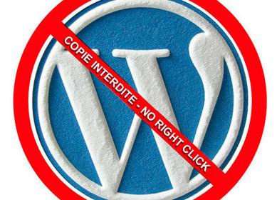 Évitez la copie et les plagieurs sous WordPress | Mes ressources personnelles | Scoop.it