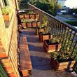 Iniciación a la horticultura urbana: Huertos en el Balcón | ECOagricultor | Agricultura Ecológica | Scoop.it