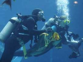 Scuba diving lessons help people overcome their fears - ABC15.com (KNXV-TV) | DiverSync | Scoop.it