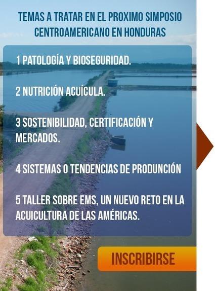 Tenth Central American Aquaculture Symposium - Honduras - 26-29 August 2014 | Aquaculture Recruitment | Scoop.it