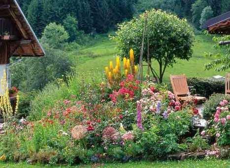 Jardin d'altitude : la flore locale | jardins et développement durable | Scoop.it