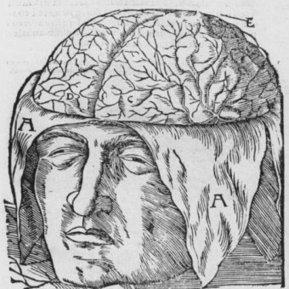 Robert Rupert, Extending the mind, March 2012 | Cognition sociale | Scoop.it