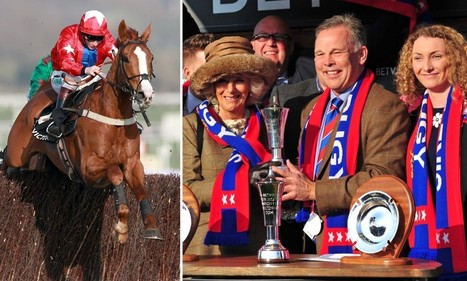Birthday gift horse that won £200,000 at Cheltenham | The wonderful world of horses | Scoop.it