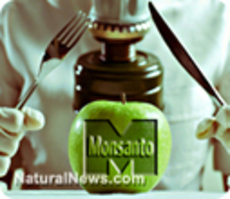 Monsanto enters pharmaceutical business, acquir...