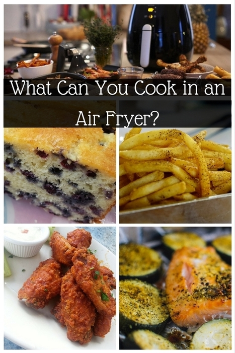 What Can You Cook in an Air Fryer? | AirFryers.net | Moms | Scoop.it
