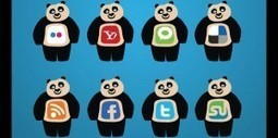 How Social Is Google's Panda? | Growing the Online Campus | Scoop.it