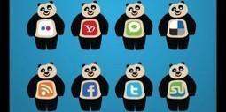 How does Google Panda Update affect Social Media? | Marketing Internet Paris Ile de France | Scoop.it