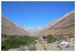 Dans la Vallée de Elqui au Chili,  Marnier-Lapostolle se met au pisco | Autour du vin | Scoop.it