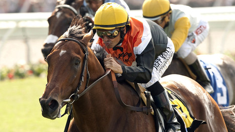 For Del Mar, a troubled time of fallen horses | Horse Racing News | Scoop.it