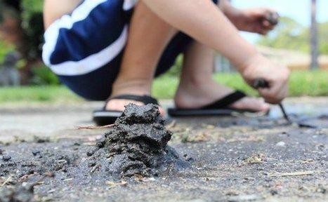 Las 10 cosas que tu hijo necesita hacer mientras sea niño | Recull diari | Scoop.it