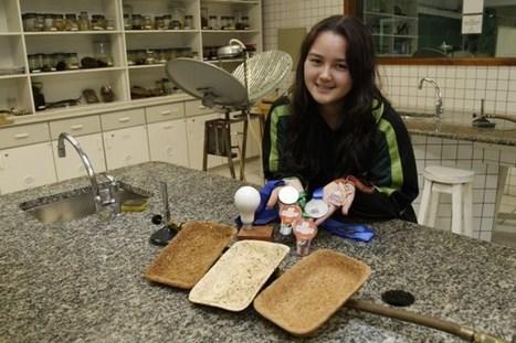 Joven de 17 años crea una alternativa biodegradable a las bandejas de poliestireno | Ecocosas | Transición | Scoop.it