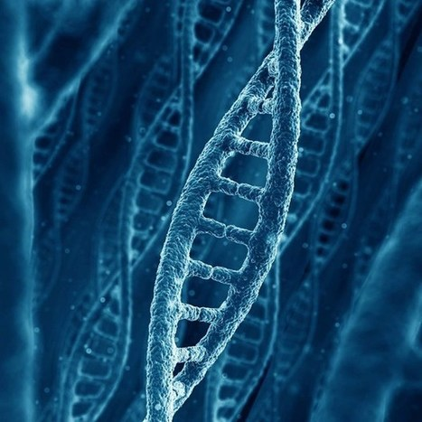 Global genome study offers schizophrenia breakthrough (Wired UK) | Health & Science | Scoop.it