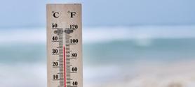 Climat : la Banque mondiale décrit une planète à +4°C | CHANGEMENT CLIMATIQUE  CLIMATE CHANGE | Scoop.it