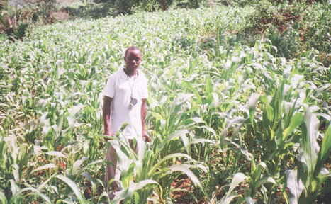 ICTs for Rural Youth Farmers - Log'el Project | Peter Day's Scoops | Scoop.it
