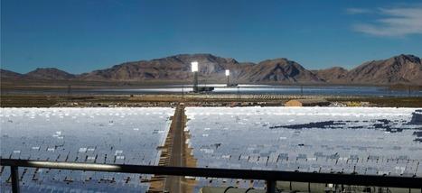 La plus grande centrale d'énergie solaire du monde grille les oiseaux en plein air | Environnement et DD | Scoop.it