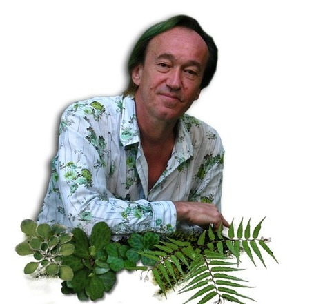 Welcome to Vertical Garden Patrick Blanc | Vertical Garden Patrick Blanc | Vertical Farm - Food Factory | Scoop.it