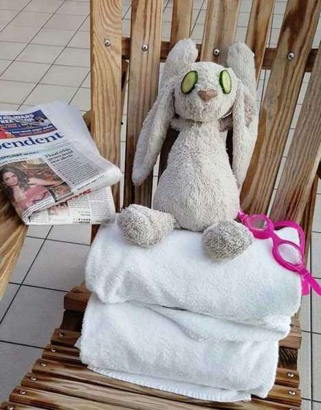 Hotel Not Only Returns Lost Toy, It Makes Photo Album of Bunny's VIP Stay | This Gives Me Hope | Scoop.it