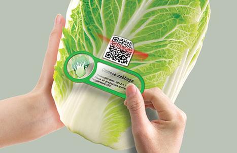 Fridge Magnet, l'invention ultime pour en finir avec les aliments qui périment dans votre frigo | Innovation | Scoop.it