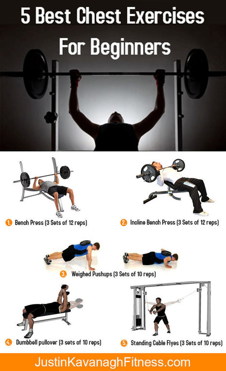 5 Best Chest Exercises For Beginners | Best Leg Workouts For Mass Gain | Scoop.it