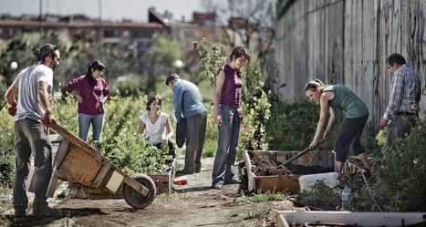 Tous au jardin!-terraeco | training | Scoop.it