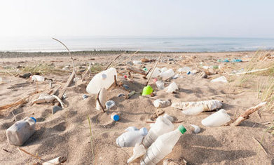 Ecover to turn sea plastic into bottles in pioneering recycling scheme | Conservation & Environment | Scoop.it