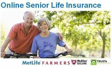 Compare Whole Life Insurance Quotes   Finance advice   Scoop.it