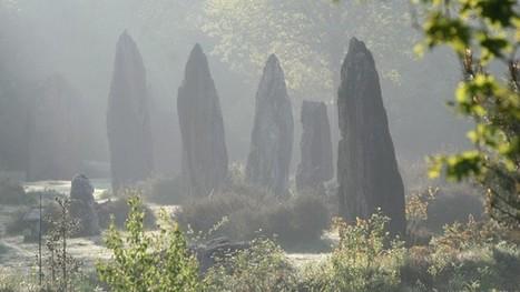 Une 7e réserve naturelle pour la Bretagne | Mes passions natures | Scoop.it