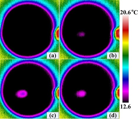 Enhanced Thermographic Detection of Skin Cancer Through Combining Laser Scanning and Biodegradable Nanoparticles | Project Virtual Tumor Cancer in silico and Alternative Cancer Therapies | Scoop.it