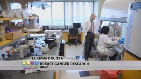 Existing Leukemia Drug Brings New Hope In Fighting Aggressive Breast Cancer | Breast Cancer News | Scoop.it