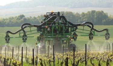 ''100 % écologique'' : la Champagne publie son nouveau référentiel de viticulture durable | Consommation alternative | Scoop.it