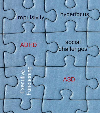 autism spectrum disorder | Edge Coaching | Community and Family Studies | Scoop.it