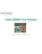Indian Wildlife Tour Packages | Best India Safari and Wildlife Tours | Scoop.it