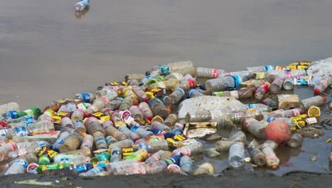 Pollution marine: les ravages des déchets en plastique de l'homme - Science - RFI | Déchets & Assainissement | Scoop.it