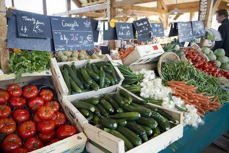 Grabels, le marché où l'étiquette est reine | Alim'agri | Circuits courts | Scoop.it