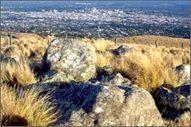 Port Hills - Natural environment - Christchurch City Council | Walking Christchurch | Scoop.it