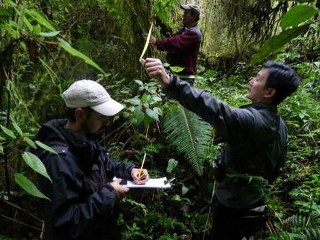 Ecosystem Services in High Andean Wetlands   Financing Nature Conservation   Scoop.it