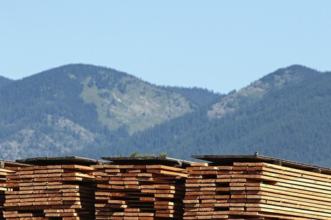 U.S., Canada Approaching Trade Dispute Over Softwood Lumber | Timberland Investment | Scoop.it