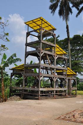 site de lucas grandin - Jardin sonore au Cameroun | DESARTSONNANTS - CRÉATION SONORE ET ENVIRONNEMENT - ENVIRONMENTAL SOUND ART - PAYSAGES ET ECOLOGIE SONORE | Scoop.it