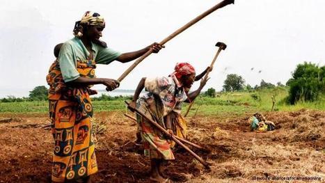 La Commerzbank veut combattre la faim | Questions de développement ... | Scoop.it