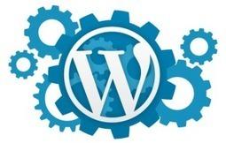 5 étapes clés pour réussir son site Web avec WordPress | Le blog de la formation informatique | Veille Informatique par ORSYS | Scoop.it