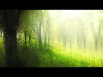 Painted Echoes (piano solo) - Tim Glemser - YouTube | fitness, health,news&music | Scoop.it