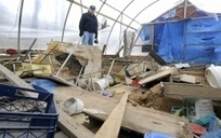 Duryea dig site ransacked by vandals - News - Citizens' Voice | Archaeology Tools | Scoop.it