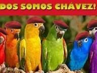 La Venezuela incendiada de las redes sociales   Ciudadanía informante   Scoop.it
