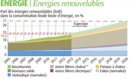 14,2% de l'énergie en France est renouvelable | Biomasse et Energies Renouvelables | Scoop.it