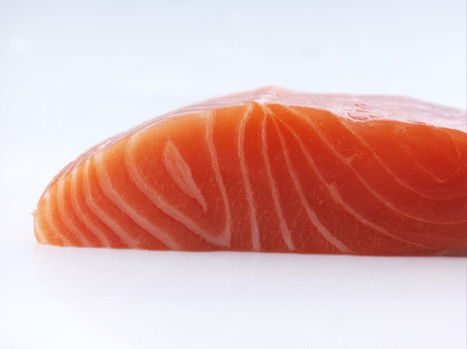 The Norwegian Seafood Council: Record growth continues in August - Aquaculture Directory | Aquaculture Directory | Scoop.it