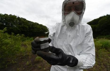 Japon: Greenpeace appelle à différer le retour des habitants autour de Fukushima | Japan Tsunami | Scoop.it