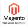 Best Premium Magento Themes
