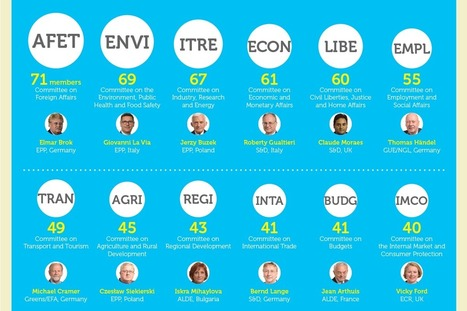 INFOGRAPHIC: Who is who in the European Parliament | Infos sur le milieu musical international | Scoop.it